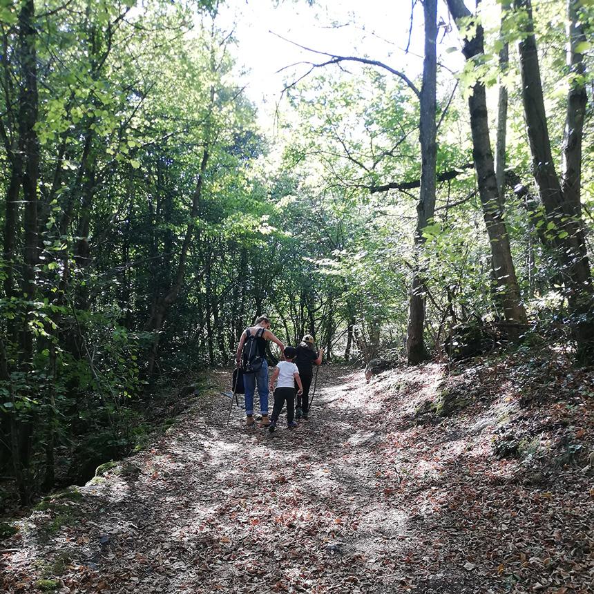 Cécile et ses enfants dans les bois